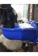 Otomatik Koyun Suluğu