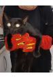 Kedi Yakalama Eldiveni 40 cm