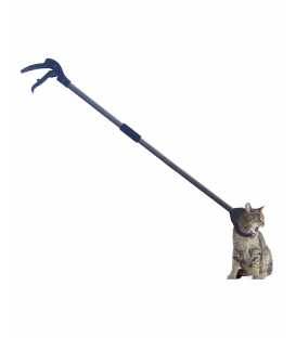 Kedi Yakalama Kıskacı