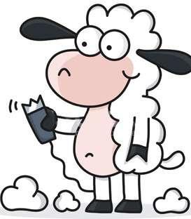 Koyun Kırkma Makinaları